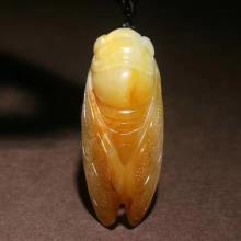 和田玉黄沁籽料-蝉