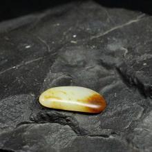 红皮白玉子料原石(特惠)