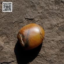 新疆和田黄沁籽料原石(实价)
