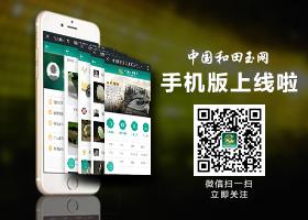 中国和田玉网手机版上线啦